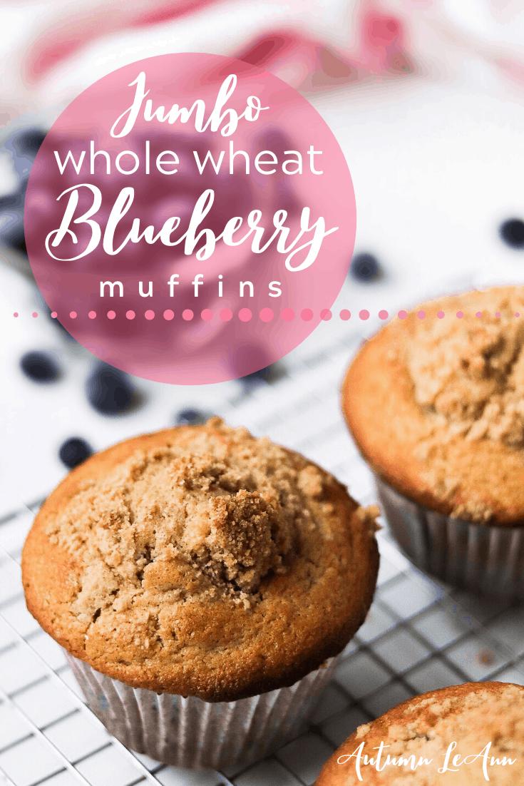 blueberrymuffinpin2