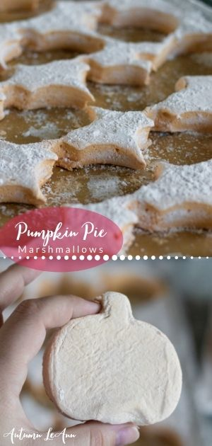 pumpkin pie marshmallows longpin2